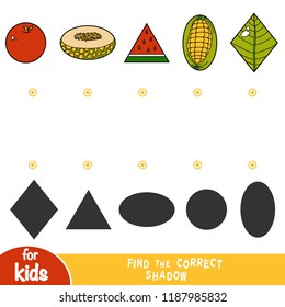 Find the correct shadow, education game for children, Set of nature items - apple, honeydew melon, watermelon, corn, leaf