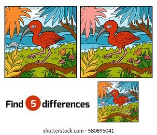 Imágenes, fotos de stock y vectores sobre Educativa   Shutterstock