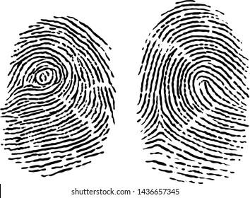 Finger print illustration, drawing, engraving, ink, line art, vector