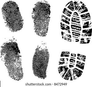 fingerprints and bootprint