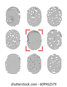 Fingerprints or fingertip prints identification scanner and biometric id trace. Security authorization and crime protection vector icons set