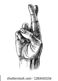 Fingers crossed sketch. Luck symbol. Vector illustration