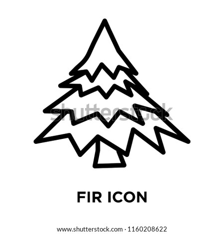 fir icon vector isolated on white stock vector royalty free  fir icon vector isolated on white background fir transparent sign linear symbol and stroke