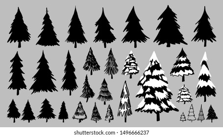Fir or pine trees on gray background vector illustration