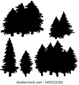 Fir tree silhouettes on white background.