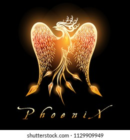 Fire burning Phoenix Bird on black background. Vector Illustration.