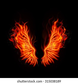 Fire burning wings. Vector