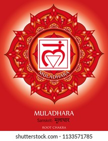 First chakra illustration vector of Muladhara