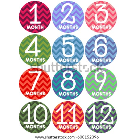 first year set baby month stickers stock vector royalty free