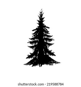 fir-tree silhouette on a white background. Vector