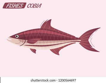 Fish cobia character. Cartoon vector illustration. Fishing or food concept