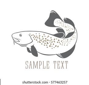 fish cod;