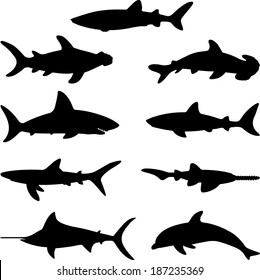 Fish collection - vector silhouette