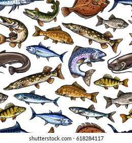 Fish or fishing seamless pattern of vector salmon or trout and tuna, sprat mackerel or flounder. Catch of fresh pike and perch and carp, sheatfish or catfish, herring and marlin