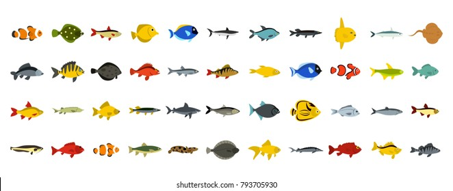 Fish icon set. Flat set of fish vector icons for web design isolated on white background