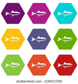 Fish icons 9 set coloful isolated on white for web