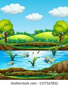 Fish in nature pond illustration