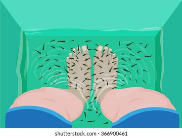 Fish Pedicure or Massage concept. Top View of Feet in a Spa Massage Tub Filled with Doctor Fish or Garra rufa. Editable Clip Art.