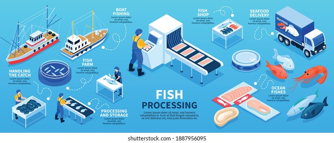 Fish processing isometric infographics scheme from boat fishing and fish farm to seafood delivery in shop vector illustration
