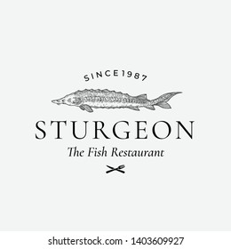 Fish Restaurant Abstract Vector Sign, Symbol or Logo Template. Hand Drawn Sturgeon or Beluga Fish with Classy Retro Typography. Vintage Vector Emblem. Isolated.