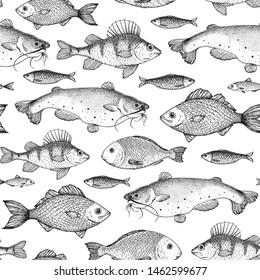 Fish seamless pattern. Hand drawn vector illustration. Seafood vector illustration. Food menu illustration. Hand drawn. Engraved style.