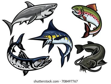 Fish set colored illustration