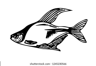 Sea Fishing Stock Vectors, Images & Vector Art | Shutterstock