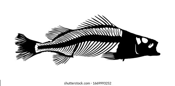Fish skeleton vector silhouette illustration isolated on white background. Dead fish bone symbol. Fishbone fossil. Diet hungry concept.