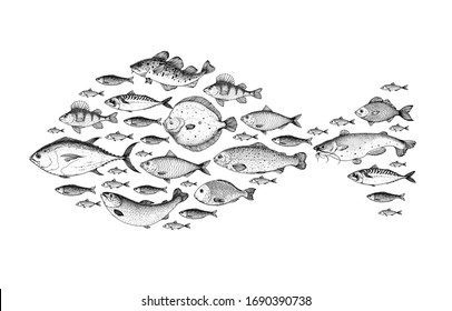 Fish sketch collection. Hand drawn vector illustration. Fish shaped. School of fish vector illustration. Food menu illustration. Hand drawn fish set. Engraved style.