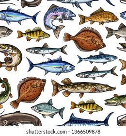 Fish sketch seamless pattern. Vector fishing marlin, scad or horse mackerel, scomber or anchovy and tuna, sardine and sea bass or dorada bream, salmon and flounder or pike fish pattern background