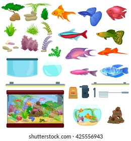 Fish tank, aquarium with water, animals, algae, corals, equipment