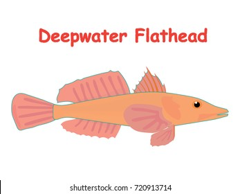 Fish vector cartoon illustration t shirt design for kids with aquatic animal deepwater flathead fish isolated on white background, different types of fish education for your children and other uses