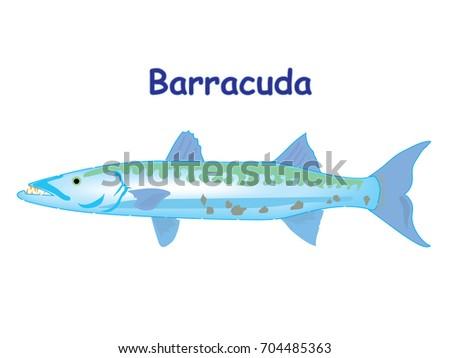 Fish Vector Cartoon Illustration T Shirt Stock Vector Royalty Free