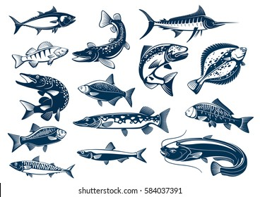 Fish vector tuna, pike and marlin, perch, bream, salmon and flounder, carp and mackerel sprat, sheatfish or catfish. Fishes blue symbols set for seafood restaurant, fishing club