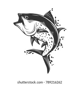 Fish white and black  isolated on the white background.Vector illustration.