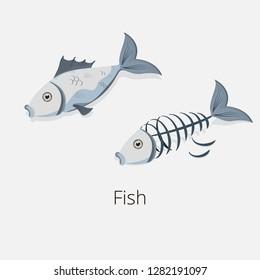 Fishbone and fish isolated illustration