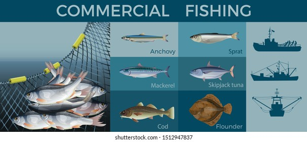 Fishery industry set with different types fishes and silhouettes of fisher boats. Vector illustration