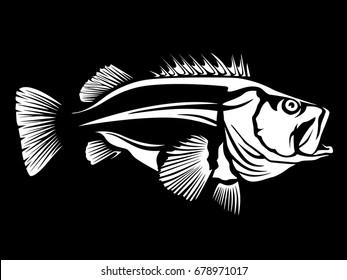 Fishing logo.Rock fish. Bass fish with rod club emblem. Fishing theme vector illustration. Isolated on white.