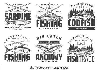Fishing sport icons, sardine and anchovy, codfish icons. Fishery equipment, fishing rods and baits. Big catch, trophies on fishing sport