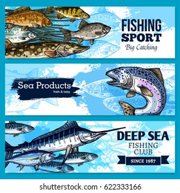 Fishing sport and sea fish products vector sketch banners set. Fisher seafood catch of ocean fishes salmon or trout, herring and bream, tuna or marlin and crucian carp or pike. Fisherman club design