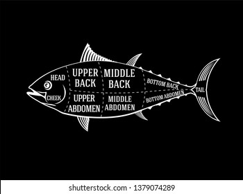 Fishmonger diagram guide for cutting tuna fish in chalk style