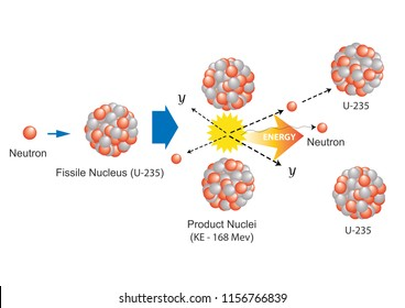 fission nuclear.Physics fission nuclear