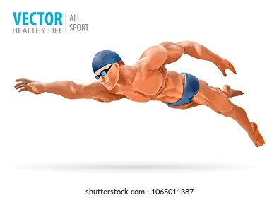 Fit swimmer training in the swimming pool. Professional male swimmer inside swimming pool. Butterfly stroke. A man dives into the water. Vector illustration