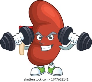 Fitness exercise right human kidney cartoon character using barbells