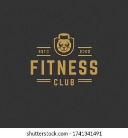 Fitness logo or badge vector illustration kettlebell as lion head sport equipment symbol silhouette. Retro typography emblem design template or t-shirt print stamp.