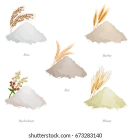 Five batches with cereal flour, ears and names / Batches of rice, barley, rye, buckwheat and wheat flour