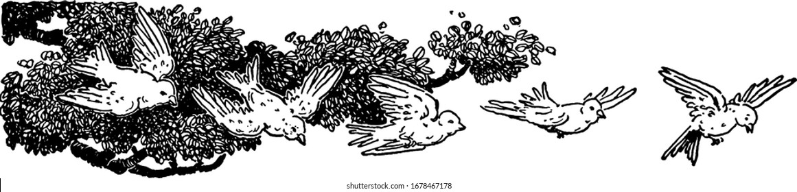 Five birds taking flight from a tree, its showing flying birds in the sky vintage line drawing or engraving