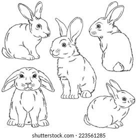 Five black and white sketches of cute rabbits sitting in various poses. Vector Illustrations.