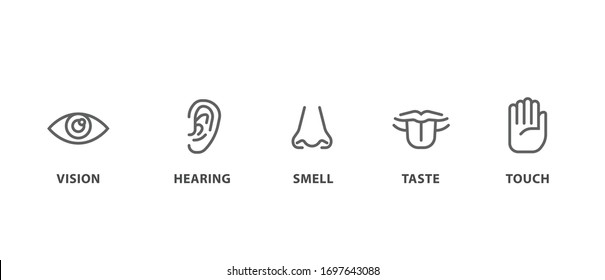 five human sense icon set, flat line design