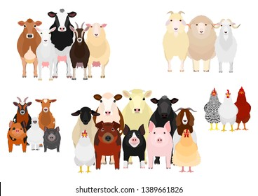 five livestock groups by purpose